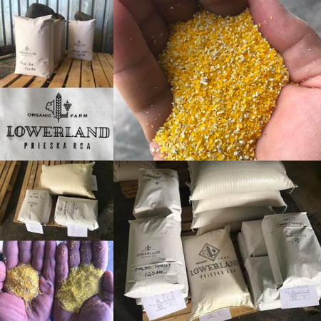 Lowerland Organic Farm